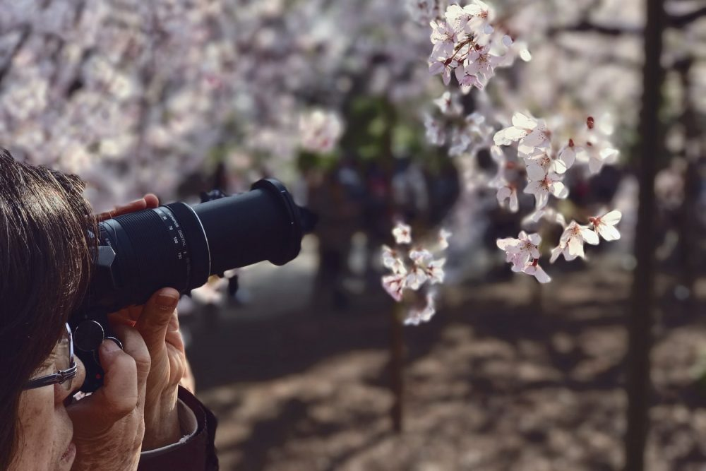 Сменный объектив для зеркального фотоаппарата
