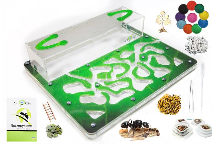 Трехслойная муравьиная ферма Стандарт Амазонка Комплект для новичка
