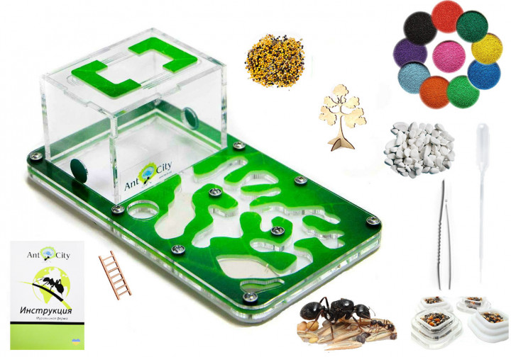 Трехслойная муравьиная ферма Смарт Амазонка Комплект для новичка