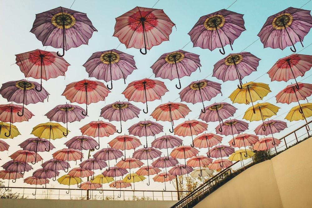 Лучший зонт