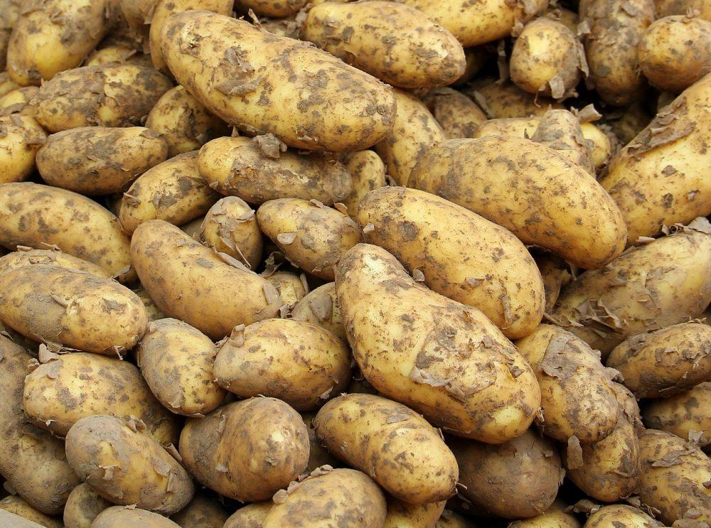 Страви з молодої картоплі