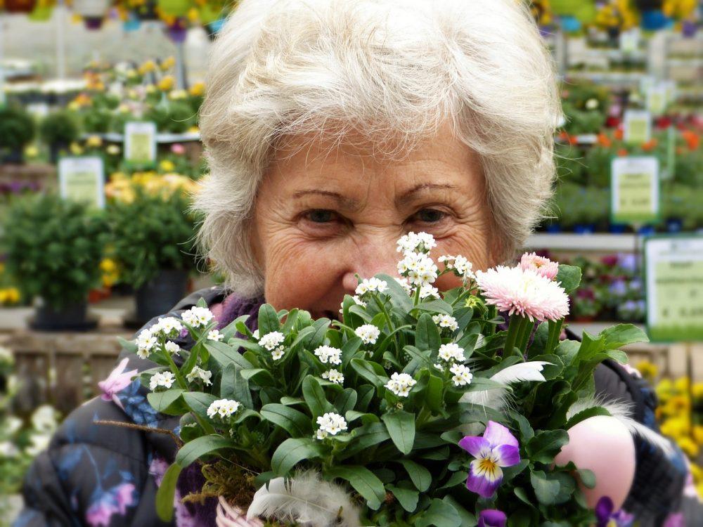 Квіти для бабусі